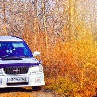 Хорошая штука лежачий полицейский - и скорость регулирует, и переехать приятно. :: Наталья Александрова