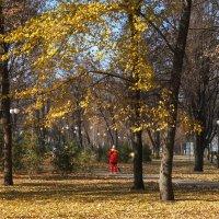 Листопад :: Наталья Тимошенко