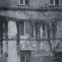 Обратная сторона Петербургских проспектов :: Ксения Старикова