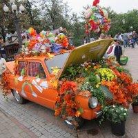 """""""Запорожец"""" весь в цветах и листьях :: Дмитрий Никитин"""