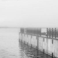 Туманная даль. :: Виктор Заморков