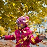 Осень :: kancler Лакутенко