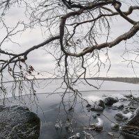 Первый лед :: Игорь Чубаров