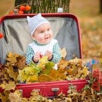 Краски осени 2015 :: Жанна Аистова