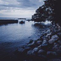 Ночь у залива :: MikhaeL_spb Клецов