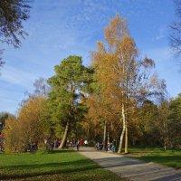 Воскресный день на городском озере :: Galina Dzubina