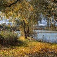 Осень опять обнимает за плечи… :: Алла Allasa