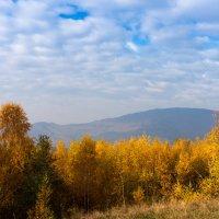 Золотые Карпаты :: Сергей Форос