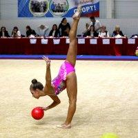 Пока судьи не видят, я в мячик поиграю! :: Александр Пчельников