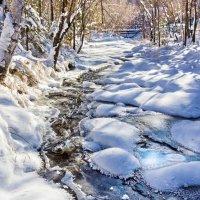 Последний незамёрзший поток :: Анатолий Иргл