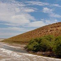 Соляные источники мёртвого озера :: Dr. Olver  ( ОлегЪ )