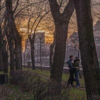 Когда, вдыхая воздух, не думаешь при этом, что дышишь чистым светом :: Ирина Данилова