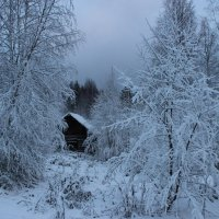 Зимушка-зима. :: Андрей Скорняков