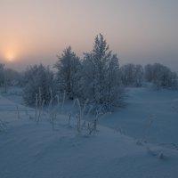 Мороз . туман и солнце :: Олег Кулябин