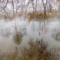 Осенние перевёртыши.... :: Андрей Войцехов