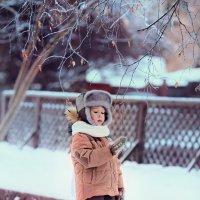 Зима пришла :: Ольга Гимаева