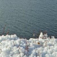 Первый снег :: Святец Вячеслав