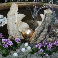 На выставке орхидей :: Елена Павлова (Смолова)