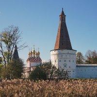 Иосифо-Волоцкий монастырь. :: Юрий Шувалов