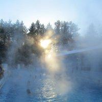 открытый бассейн :: tgtyjdrf