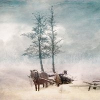 зима :: dex66
