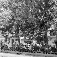 Душанбе 1979 г. :: Евгений Леоненко