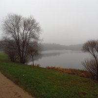 Напустили тумана! :: Андрей Лукьянов