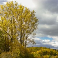 Осенние краски :: Waldemar .
