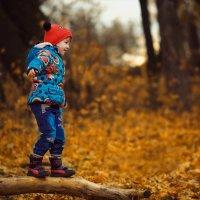 Осень золотая :: Инна Пивоварова