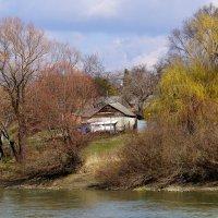 На берегу реки Кубань :: Игорь Сикорский