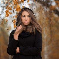 Осень :: Евгений Шевелев