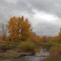 Хмурая осень :: Dr. Olver  ( ОлегЪ )