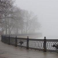 Питер в тумане :: Павел Блюменберг