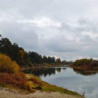 Осень на реке Сож :: Татьяна Шестакович