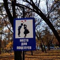 Целоваться только, в отведённых для поцелуев, местах! :: Владимир Болдырев