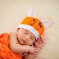 спят усталые лисички :: Татьяна Исаева-Каштанова