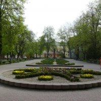 Площадь  Мицкевича  в  Ивано - Франковске :: Андрей  Васильевич Коляскин