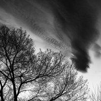 Ветер :: юрий Амосов