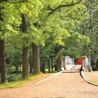 Осенние аллеи парка в Гатчине... :: Tatiana Markova