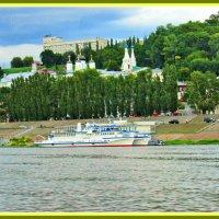 На берегу Волги в Нижнем Новгороде. :: Лара ***
