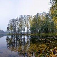 Осенью погода редко балует солнечными днями. :: Алексей