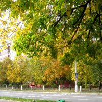 Осенью в городе :: Елена Семигина