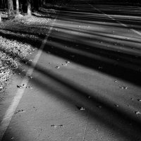 Полосатая  дорога. :: Валерия  Полещикова