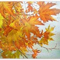 Листьев капает свет с золотых ветвей... :: Эля Юрасова