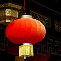 Китайский фонарик :: Tatiana Belyatskaya