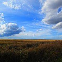 Осенний пейзаж. :: Татьяна ❁