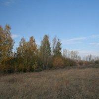 7 :: Светлана Масленникова