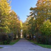 В кремлевском парке осенью (этюд 9) :: Константин Жирнов