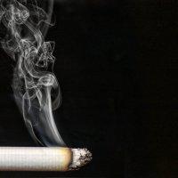 истории дыма :: Карина Родионовская