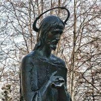Будьте мудры, как змии, и просты, как голуби... :: Владимир Бровко